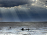 The Wash, Norfolk, Beach Landscape with Storm Clouds and Bait Diggers, UK Photographic Print by Gary Smith