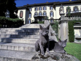 Two Russian Blue Cats Sunning on Garden Stone Steps, Italy Photographic Print by Adriano Bacchella