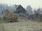 Snow Falling on Timbered House with Haystacks, Chukhrai, Bryansk Province Posters by Igor Shpilenok