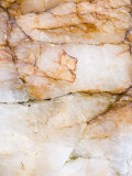 Close Up of Quartz, Scotland, UK Photographic Print by Niall Benvie