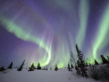 Northern Lights Northwest Territories, March 2008, Canada Photographic Print by Eric Baccega