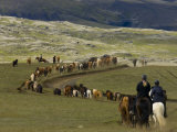 Icelandic Horses and Riders, Riding Near Landmannalaugar, Iceland Photographic Print by Inaki Relanzon