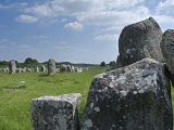 Standing Stones in the Menec Alignment at Carnac, Brittany, France Posters by Philippe Clement