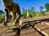 Woman Making Bricks with Mud for Traditional Building Construction, Sambava, North Madagascar Posters by Inaki Relanzon
