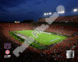 Jordan Hare Stadium Auburn Univeristy Tigers 2008 Photo