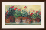 Kathleen's Geraniums Art by Carol Rowan