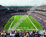 M&T Bank Stadium 2009 Photo