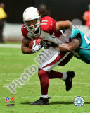 Larry Fitzgerald 2009 Photo