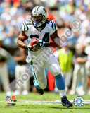 DeAngelo Williams 2009 Photo