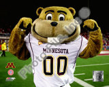 Mascot Goldy University of Minnesota Golden Gophers 2008 Photo