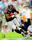Andre Johnson 2009 Photo