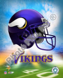 2009 Minnesota Vikings Photo