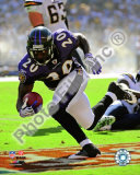 Ed Reed 2009 Photo