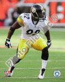James Harrison 2009 Photo
