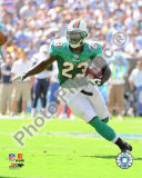 Ronnie Brown 2009 Photo