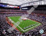 Reliant Stadium 2009 Photo