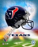 2009 Houston Texans  Logo Photo