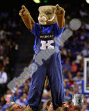University of Kentucky Wildcats Mascot Fotografía