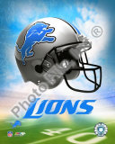 2009 Detroit Lions Team Logo Photo
