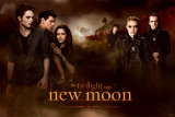 Twilight: Lua Nova Posters