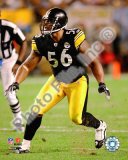 LaMarr Woodley 2009 Photo