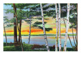 Sebago Lake, Maine - Scenic View Along the Lake with White Birches, c.1949 Print by  Lantern Press