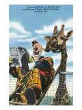 Sarasota, Fl - Ringling Bros. Barnum and Bailey Winter Quarters, Giraffe Kissing Clown's Ear Prints