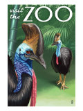 Cassowary - Visit the Zoo, c.2009 Prints by  Lantern Press