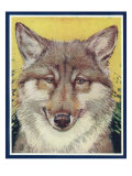 Nature Magazine - View of a Gray Wolf, c.1931 Posters