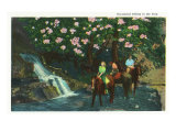 Great Smoky Mts. Nat'l Park, Tn - View of Visitors on Horseback Riding in the Park, c.1937 Prints