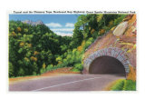 Great Smoky Mts. Nat'l Park, Tn - Newfound Gap Hwy Tunnel and Chimney Tops View, c.1941 Prints