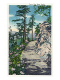 Great Smoky Mts. Nat'l Park, Tn - View of One of Many Trails in the Park, c.1940 Posters
