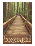 Congaree National Park - Walkway, c.2009, Poster