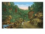 Great Smoky Mts. Nat'l Park, Tn - Scenic Loop Highway View, c.1944 Art