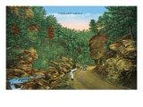Great Smoky Mts. Nat'l Park, Tn - Scenic Loop Highway View, c.1944 Art by  Lantern Press