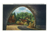 Great Smoky Mts. Nat'l Park, Tn - Autumn Scene from the Newfound Gay Hwy Loop Underpass, c.1940 Posters