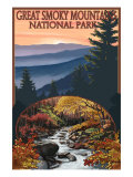 Great Smoky Mountains - Waterfall, c.2009 Print by Lantern Press 