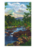 Great Smoky Mts. Nat&#39;l Park, Tn - View of Little River Near Gatlinburg, c.1946 Prints