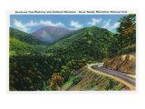 Great Smoky Mts. Nat'l Park, Tn - Newfound Gap Highway View of Bullhead Mountain, c.1941 Prints