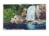 Great Smoky Mts. Nat'l Park, Tn - View of Bridal Veil Falls, c.1946 Posters