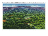 Great Smoky Mts. Nat'l Park, Tn - Panoramic Aerial View of Clingman's Dome and Skyway Drive, c.1946 Posters