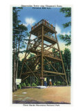 Great Smoky Mts. Nat'l Park, Tn - Clingman's Dome Observation Tower View, c.1941 Prints