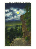 Great Smoky Mts. Nat'l Park, Tn - Moonlight Scene from One of the Many Park Trails, c.1946 Posters