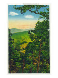 Great Smoky Mts. Nat'l Park, Tn - View of Thunderhead Mountain, c.1946 Posters