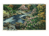 Great Smoky Mts. Nat'l Park, Tn - Overhead View of Little Pigeon River Rustic Bridge, c.1940 Posters