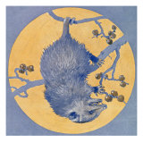 Nature Magazine - View of a Opossum Hanging Upside Down under a Full Moon, c.1926 Premium Giclee Print by  Lantern Press