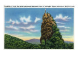 Great Smoky Mts. Nat'l Park, Tn - View of Duck Hawk Peak, c.1946 Posters