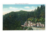 Great Smoky Mts. Nat'l Park, Tn - Scenic View Along the Newfound Gap Highway, c.1946 Prints