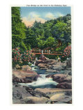 Great Smoky Mts. Nat'l Park, Tn - View of a Foot Bridge on the Chimney Tops Trail, c.1946 Prints