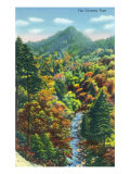 Great Smoky Mts. Nat'l Park, Tn - View of the Chimney Tops, c.1946 Prints